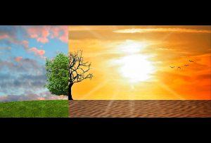 জলবায়ু পরিবর্তন Copyright Free Image by pixabay.com-g9a026b2af_1280